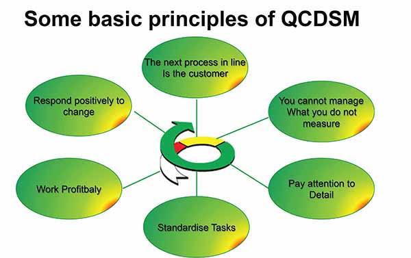 QCDSM Principles